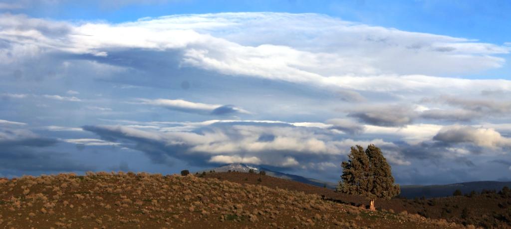 45 doc. Mt. Shasta, 12-8-2014 270