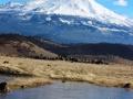 9 doc. Mt. Shasta, 1-16-2017 025